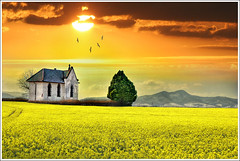 The yellow plain (Jean-Michel Priaux) Tags: flowers sky orange sun france hot tree art church field yellow photoshop jaune painting season landscape gold spring nikon religion dream culture chapel peinture dreaming valley alsace plantation paysage magical plain gospel chapelle hdr montain vosges anotherworld suset rapeseed plaine mattepainting colza ried d90 vangile ebersmunster idream priaux ebersheim infinestyle vanagram grouptripod
