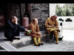Waiting and thinking (Kaj Bjurman) Tags: china wild photoshop eos pagoda goose xian 5d kina kaj markii photomatix bjurman