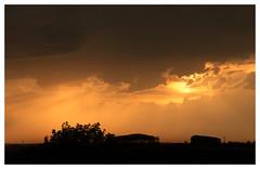 . . (: metamorfosis :) Tags: contraluz atardecer cel cielo nubes silueta naranja ocaso taronja contrallum nvols capvespre