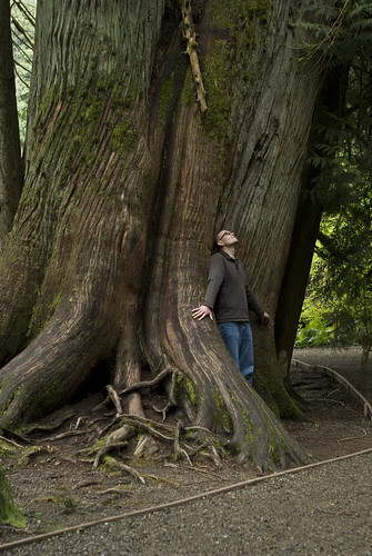 Dan in Cathedral Grove
