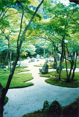 Beautiful Japanese Garden (Ray Tomes) Tags: park light tree rock japan garden japanese pebble 1992 photoscan raytomes