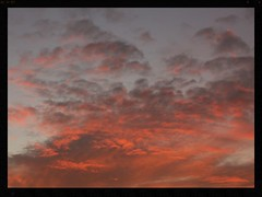 SUNSET SPLOTCHES (Zelda Wynn) Tags: sunset orange clouds auckland cloudscape waitakere troposphere newlynn zeldawynnphotography