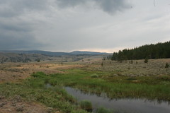 IMG_1695 (s.smith86) Tags: mammothhotsprings yellowstonepark