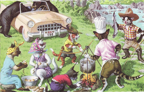 cats picnic