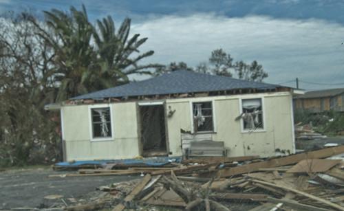 county rescue galveston broken animal team texas natural disaster emergency rapid devastation response huricane destuction