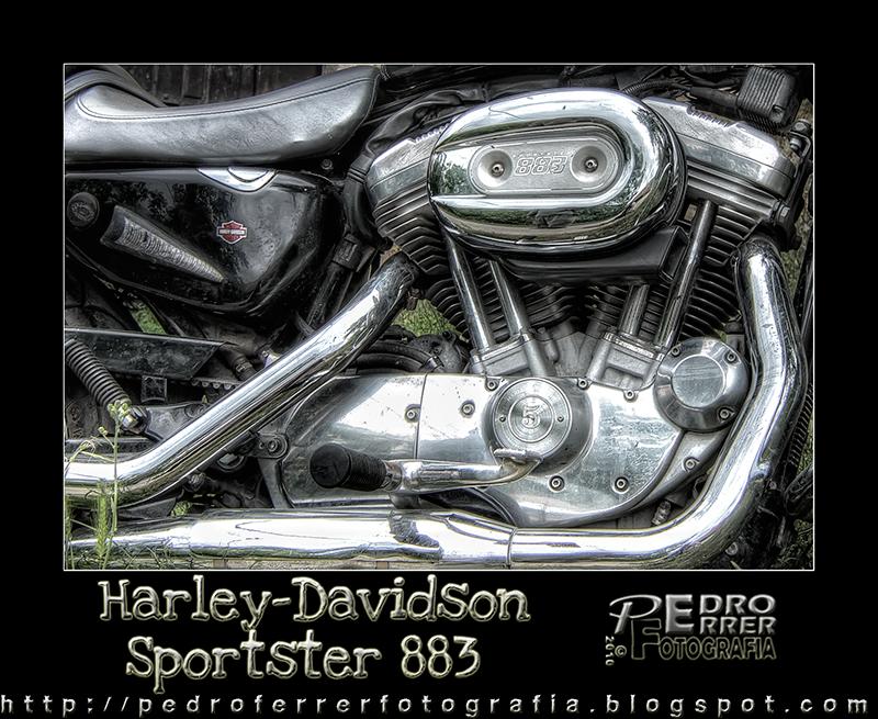 Harley-Davidson Sportster 883 - Detalle