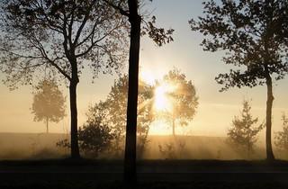 sunrise on misty morning