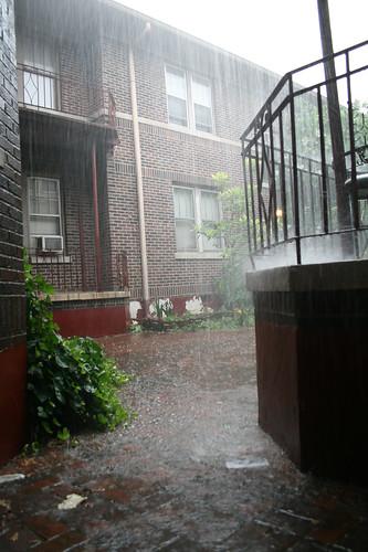 rain! — june 8