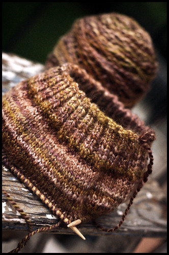 Pluot Hat