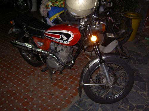 PICT5273