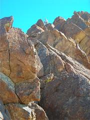 Jeanine on ridge