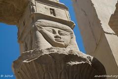 DSC_0633 (arx7) Tags: red sea sphinx set temple hall desert pyramid dam muslim islam sadat prayer tomb egypt mosque pylon nile moses cairo camel oasis mohammed valley diocletian pharaoh sarcophagus horus mummy submerged ankh karnak philae aswan luxor isis hadrian trajan ramses tut osiris allah thebes hieroglyphics tutankhamen nasser scarab hieroglyph nubian burkah hathor felucca anant ptolemy gamel nectanebo mammisi raut agilkia anantrautorg rautorg harnedjotef arhesnepher