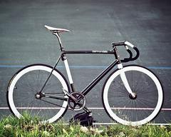 CANNONDALE CAPO (Angelo Calilap) Tags: white black bike bicycle aluminum track bikes carbon cannondale capo velodrome kissena fsa cycleangelo