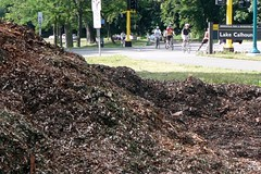 Mulch pile and bikers