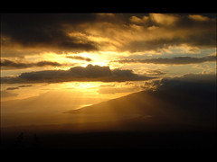 rice park 1 (mariacaridad) Tags: sunset sun nature beauty sunshine set landscape hawaii s