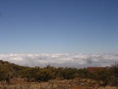 Ascending Mauna Kea5