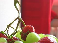 Fruit 010 (minhtu) Tags: macro fruit strawberry strawberries grapes grape redgreen erdbeere trauben erdbeeren traube rotgrn