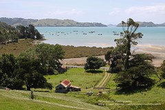 Coromandel Harbour, Farm (blauepics) Tags: new trees sea seascape green water landscape boats island coast meer wasser farm ships north boote zealand vegetation grn landschaft bume aotearoa bauernhof schiffe neuseeland kste bucht grnflche nordinsel visipix