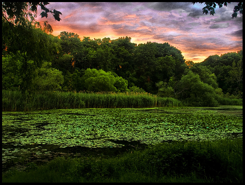 oakland lake hdr