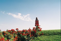 (EYLUL ASLAN) Tags: flowers blue red summer sky cloud green love film grass june nikon sunny analogue 2010 redflowers nikonf90x redoutfit baharbegumbasaran