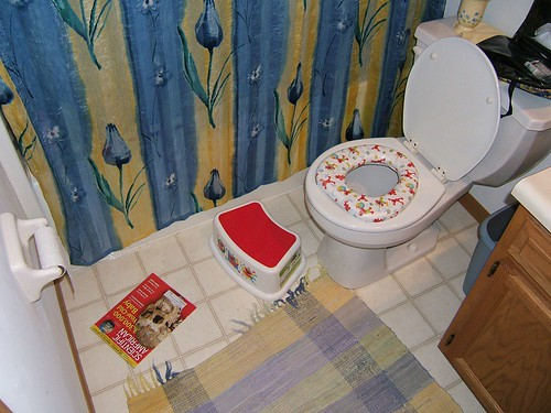 Potty seat, stool, Scientific American....