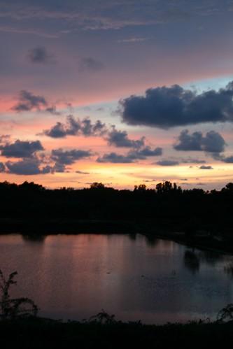 Pink and Indigo Sky