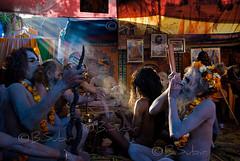 Akhara.......... (subirbasak) Tags: people india color indian smoke fair yogi ritual devotee hinduism basak pilgrim rites naga jota mela candidshot haridwar indianwomen festivalofindia akhara kumbh peopleofindia kumbhamela junaakhara indiaphoto indianritual subirbasak indianfair subirbasakorgfreecom colorfullcloths kumbh2010 ritualsofindia othersideofindianpeople kumbhmela2010 mahakumbh2010 traditionalritual kumbhafair kumbhmelainharidwar indiansandhu kumbhfairinharidwar kumbhfair2010 colorfulpeopleofindia indiannagababa nadedmonk purnakumbh2010 traditionalritualofindia facesofindiannagapeople nudesandhu indiantraditionalritual nagasandhusakhara purnakumbh