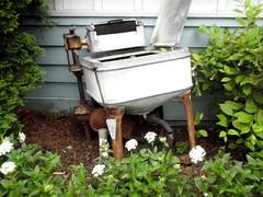 Wash day (Howard33) Tags: flowers art electric yard tennessee machine washing dollywood maytag wringer
