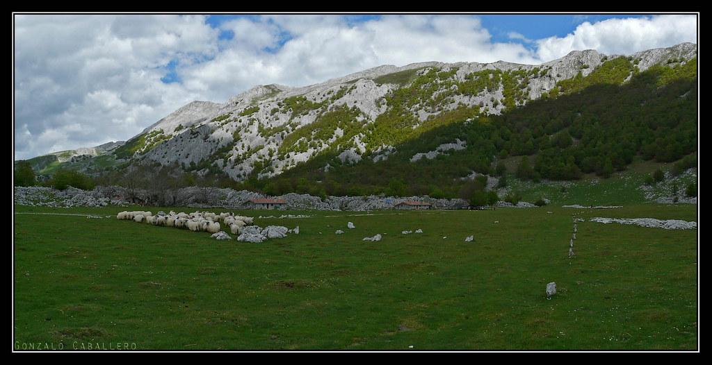Campos de Oltza, bajo el Aizgorri