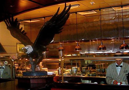 Bald Eagle overlooks openkitchen