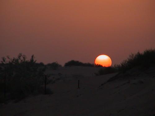 The Camp 0 Desert Sunset 1