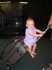 Riding the Suitcase