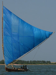 India - Pulicat Lake - 027 - sailboat on the lake