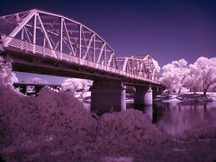Infrared Bridge (King Woodrose) Tags: bridge blue trees tree colors architecture purple sony cybershot infrared sacramento hoya r72 h7 dsch7