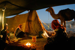 _MG_6494 (raed.krishan) Tags: life people fire desert tent camel camels beduins beduin dromader