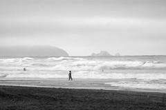 (sbrrmk) Tags: life sanfrancisco california people blackandwhite bw usa beach portraits surfing human oceanbeach portre courage hayat insan urbanlife yasam siyahvebeyaz dnyadaninsanmanzaralar dunyamdaninsanmanzaralari