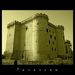 Tarascon (m@®©ãǿ►ðȅtǭǹȁðǿr◄©) Tags: france tarascon canonefs1855mmf3556 canoneos400ddigital m®©ãǿ►ðȅtǭǹȁðǿr◄© marcovianna