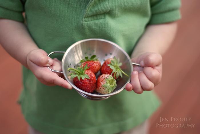 jamersonstrawberries
