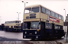 Jumbo comparison, West Bromwich 1980 4006 (Walsall1955) Tags: bus buses jumbo fleetline parkroyal prv 4006 northerncounties ncme wmpte daimlerfleetline westbromwichcorporation westmidlandspte westbromwichbusstation wbct westbromwichcorporationtransport toc6h