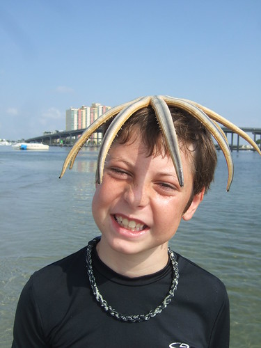 Trey with a starfish hairdo!