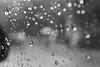 grace like rain. (annaified) Tags: window rain bokeh fife ilovebokeh sooc fifeiloveyousomuchithurts