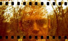 (buttha) Tags: 120 6x6 film me analog 35mm xpro doubleexposure crossprocess io crossprocessing 135 doppiaesposizione analogico holga120fn autaut tetenalcolortecc41 fujichromeprovia400xrxp canoncanoscan8800f authorsclub