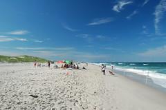 Beach at Island Beach State Park