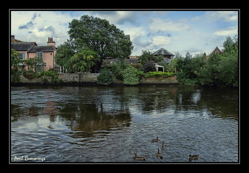 The River at Christchurch - In Explore August 21st -- stoatinshot england uk river fab ducks p.cummings pcummings 2007 august