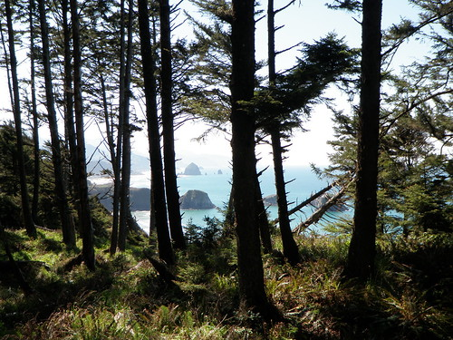 hike to crescent beach