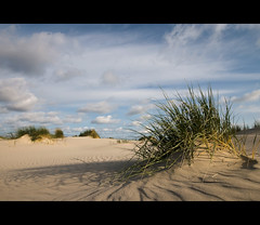 Grassy beach (Dani℮l) Tags: sunset sky sun holland waddenzee landscape sand ripple daniel postcard tag dune nederland noordzee groningen schaduw friesland schiermonnikoog landschap duin lowlevel d300 sandune grassybeach helmgras duingras zandduin