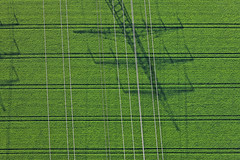 Shadow under high voltage (Aerial Photography) Tags: shadow verde green field lines by graphicart landscape ed bayern graphics energie landwirtschaft feld grafik aerial grn agriculture landschaft schatten strom deu luftbild luftaufnahme parallele strommast obb stromleitung linien deutschlandgermany getreidefeld ackerbau parallelen neuching fotoklausleidorfwwwleidorfde 24052010 1ds44814 lausbach vgoberneuching neuchinglkrerding