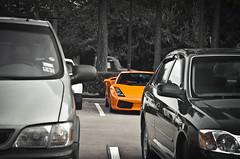 Lamborghini Gallardo (texan photography) Tags: orange fast rollsroyce ferrari bugatti lamborghini scuderia astonmartin gallardo f430 veyron 599 lamborghinigallardo selectivecoloring lp640 worldcars lp560 lp670sv 430599gto