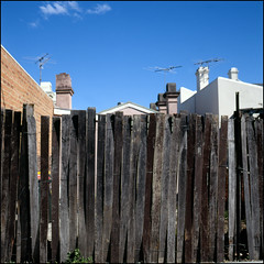 (Kenneth McNeil) Tags: old blue houses sky urban house 6x6 rooftop fence mediumformat square wooden colorful skies rooftops sydney fences australia squareformat nsw newsouthwales medium format colourful australien juxtaposition antennas residentialarea oldwoodenfence kennethmcneil