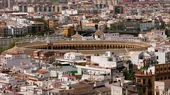 Plaza de toros de la Maestranza (Comparsa Fotografia) Tags: panorama sevilla panoramic seville andalousie panoramique maestranza andalousia plazadetorosdelamaestranza panoramicshot larealmaestranza